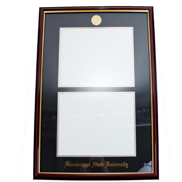 University Frames Double Petite Mahogany Gold Medallion Diploma ...