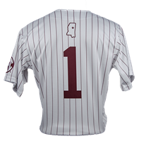 2021 Badger Grey Pinstripe Baseball Jersey